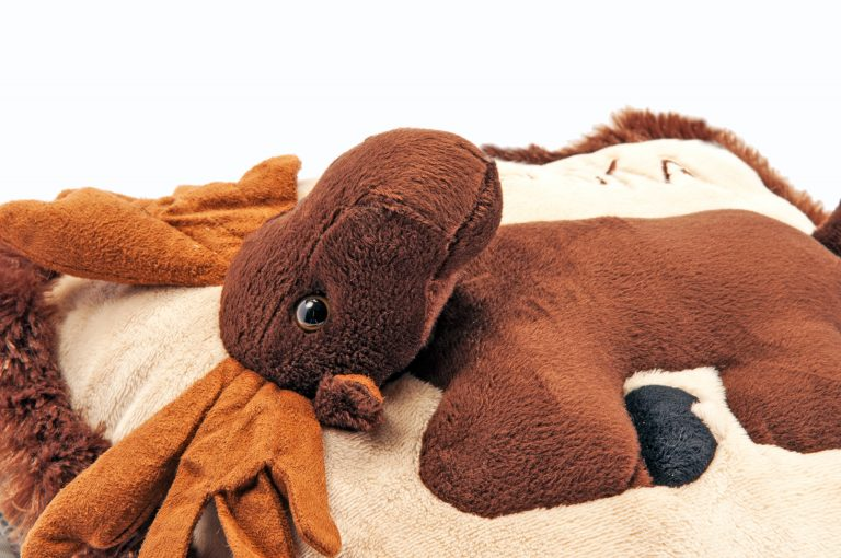 loveditinalaska.com | Wishpet Moose Pillow