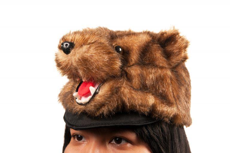 Brown Bear Plush Hat