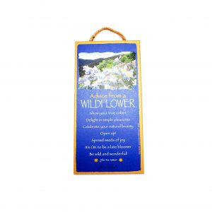 loveditinalaska.com | Advice from a Wildflower Wall Plaque